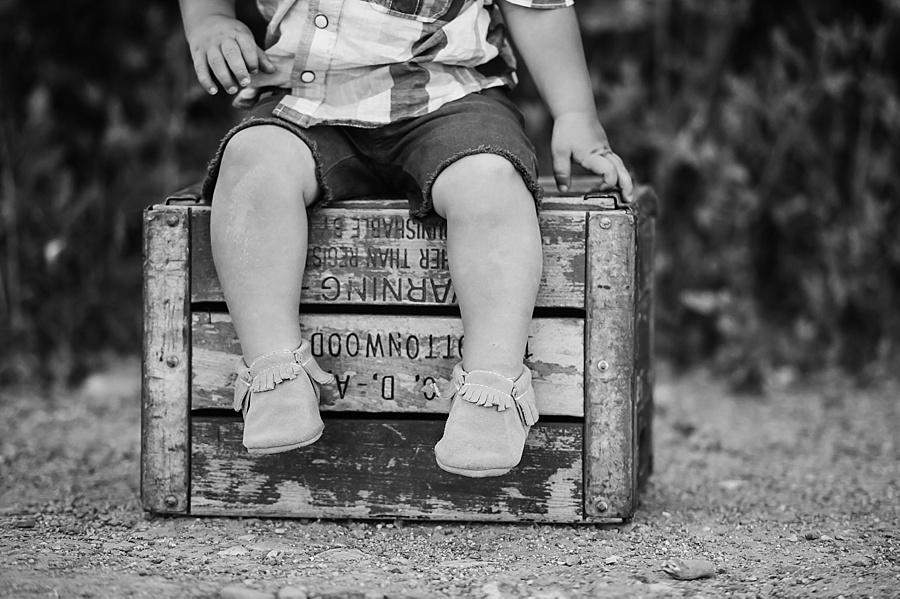 Draper Utah Family Photographer Ali Sumsion 026