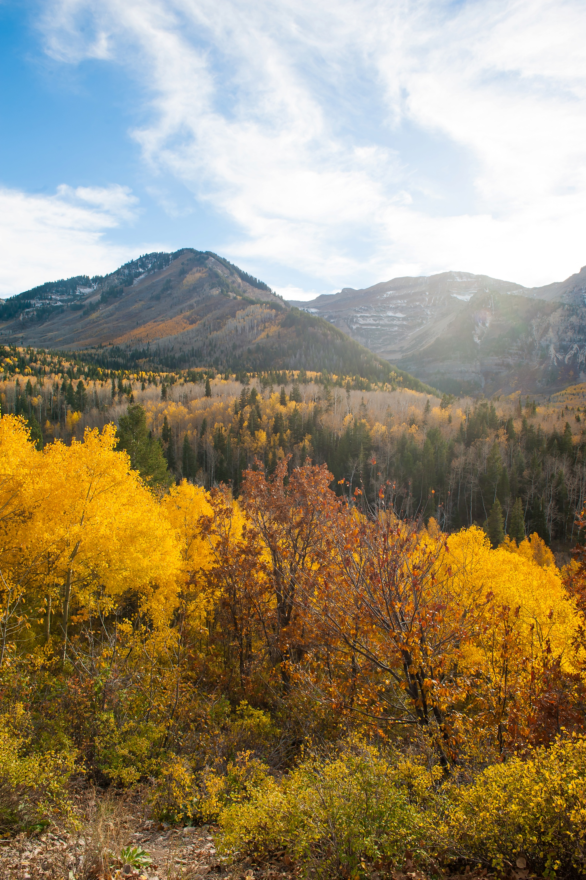 Utah Salt Lake Family Photographer Ali Sumsion 033